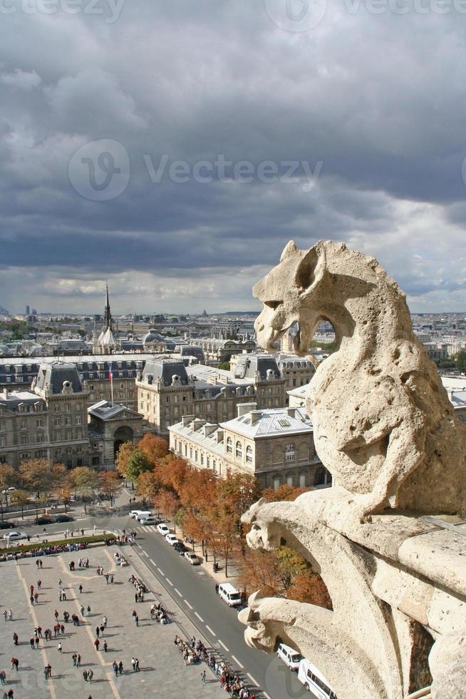 Gargoyle, Notre Dame Cathedral in Paris France. photo
