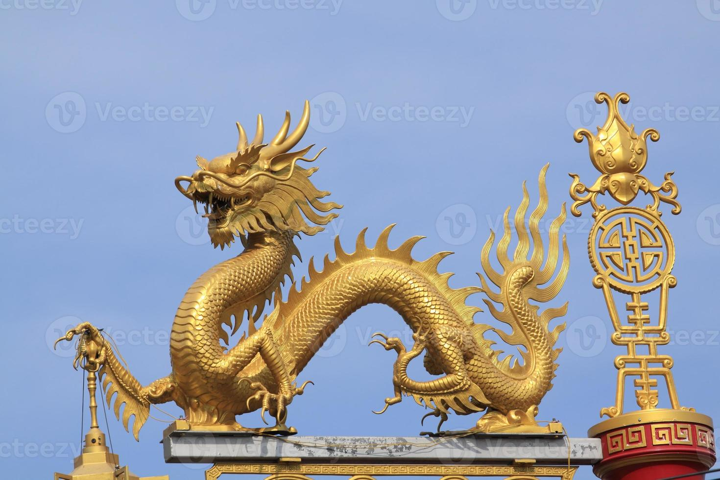 Chinese dragon. photo