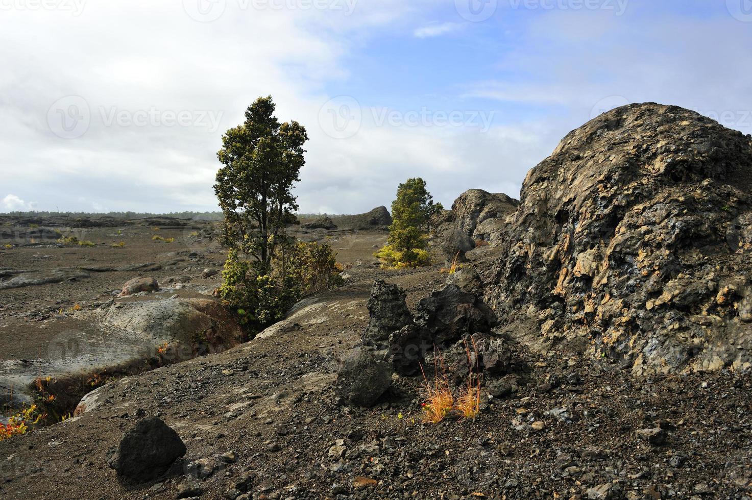 parque vulcânico, ilha grande, havaí foto