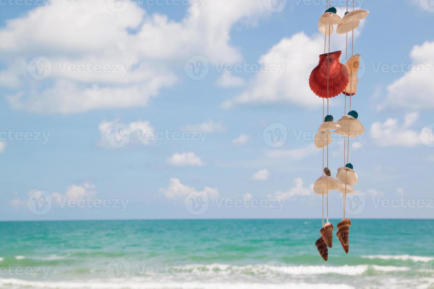 hermosa playa con conchas marinas colgantes foto