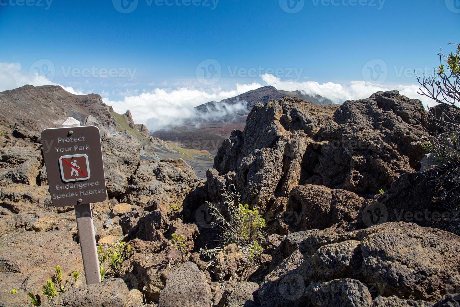 USA - Hawaii - Maui, Haleakala National Park photo