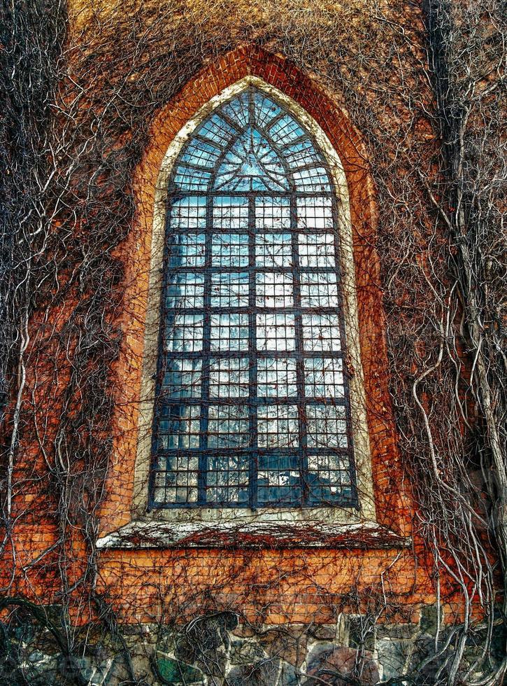 iglesia de hiedra foto