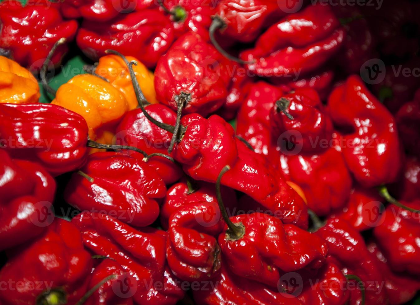 close-up van rode pepers in de supermarkt foto