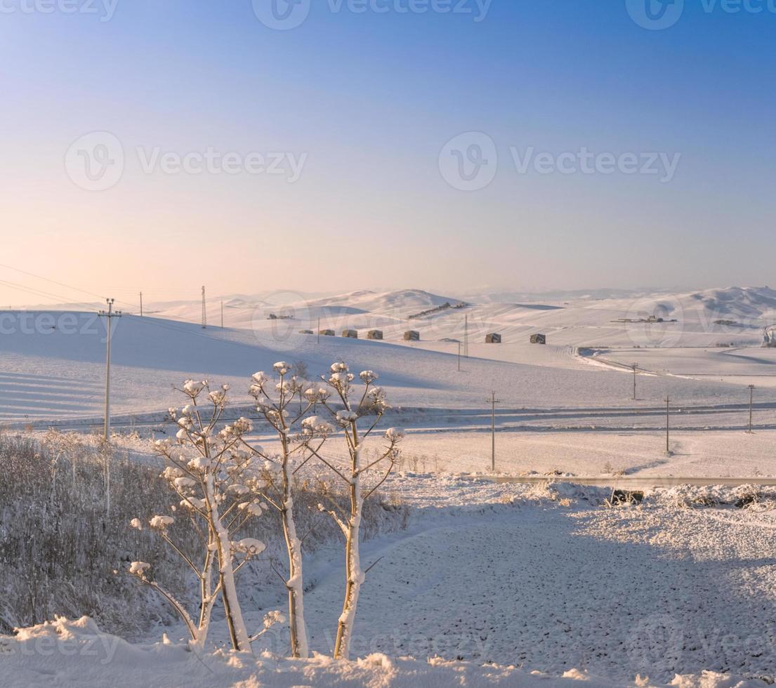 paisaje rural invierno. entre apulia y basilicata. salida del sol: ladera nevada. -Italia- foto