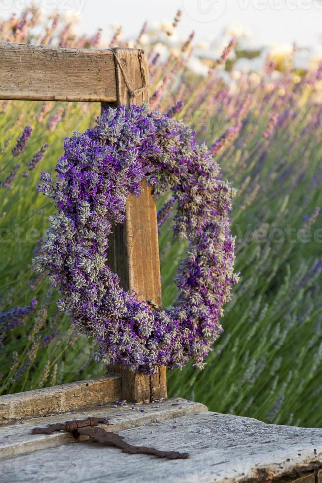 Lavender wreath in a summer garden photo