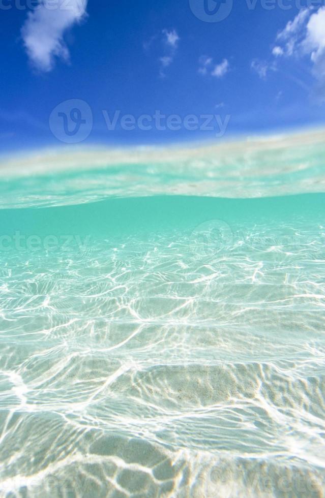 wave photo