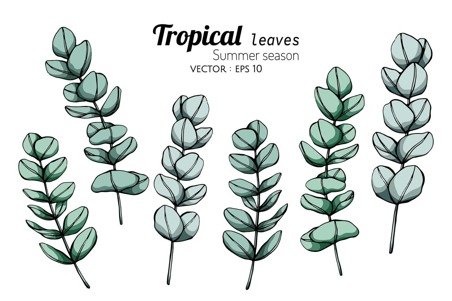 stagione estiva set di foglie tropicali vettore