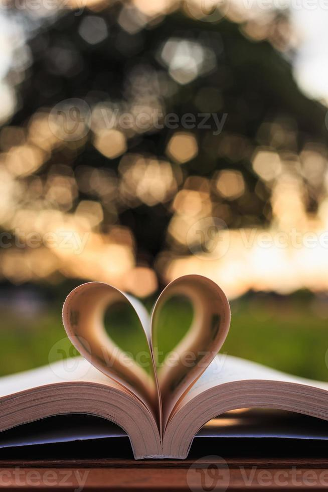 Close up book on table in sunset time photo