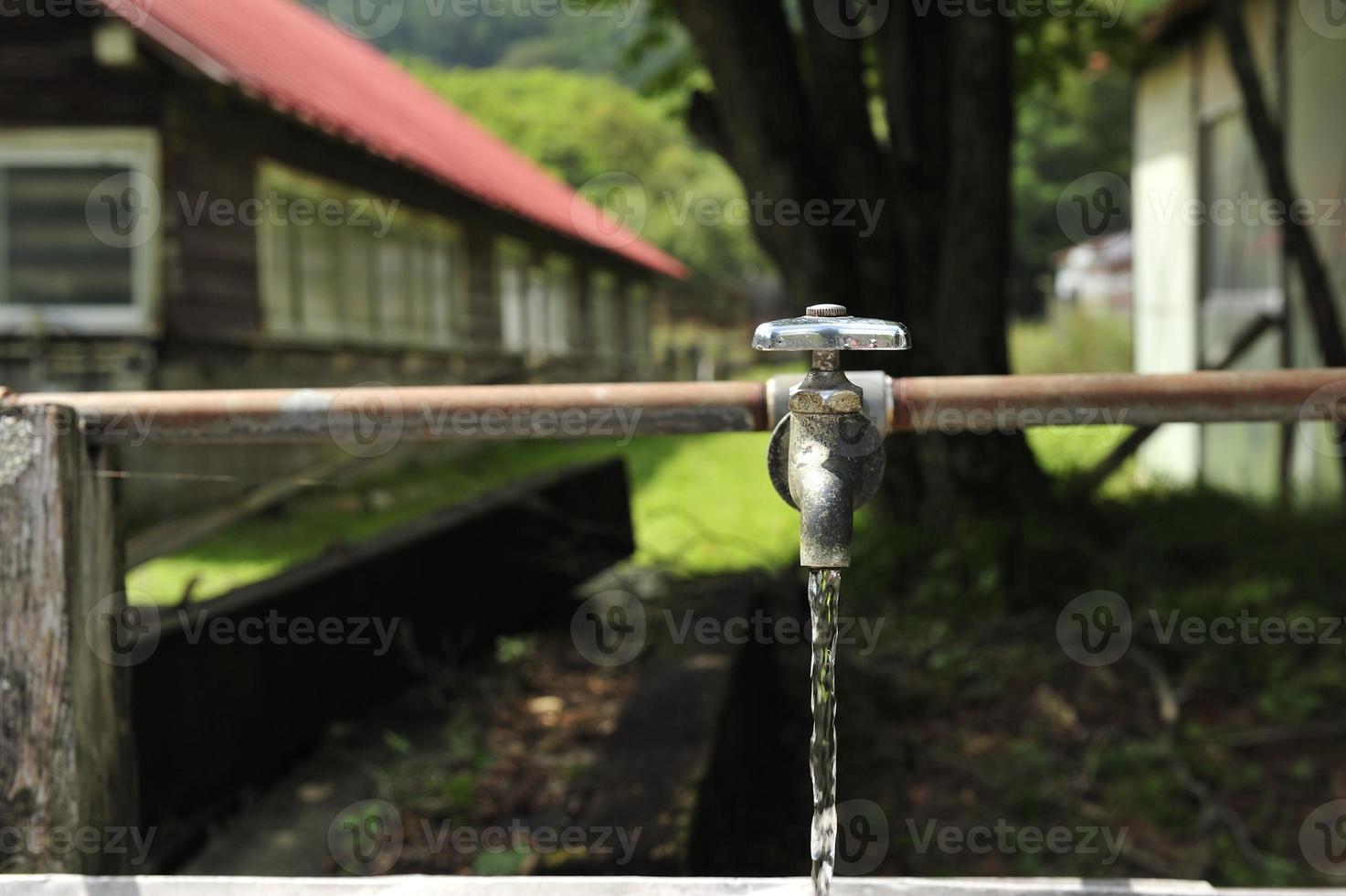 蛇口 agua potable foto