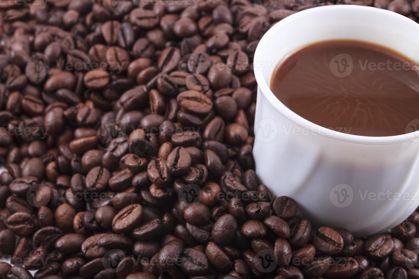 granos de café sobre fondo blanco foto