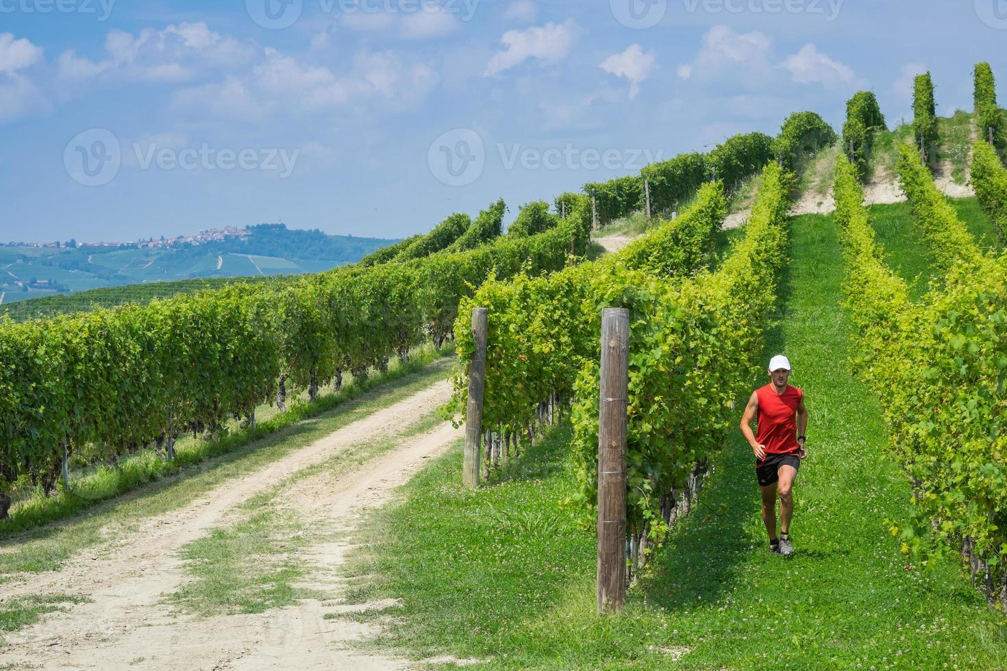 Trail running in the vineyards photo