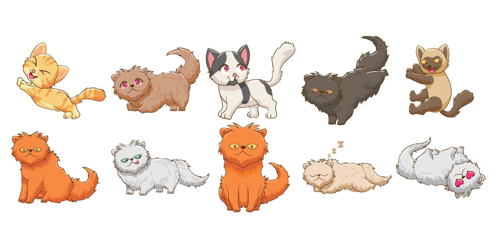 Cat Cartoon Set  vector