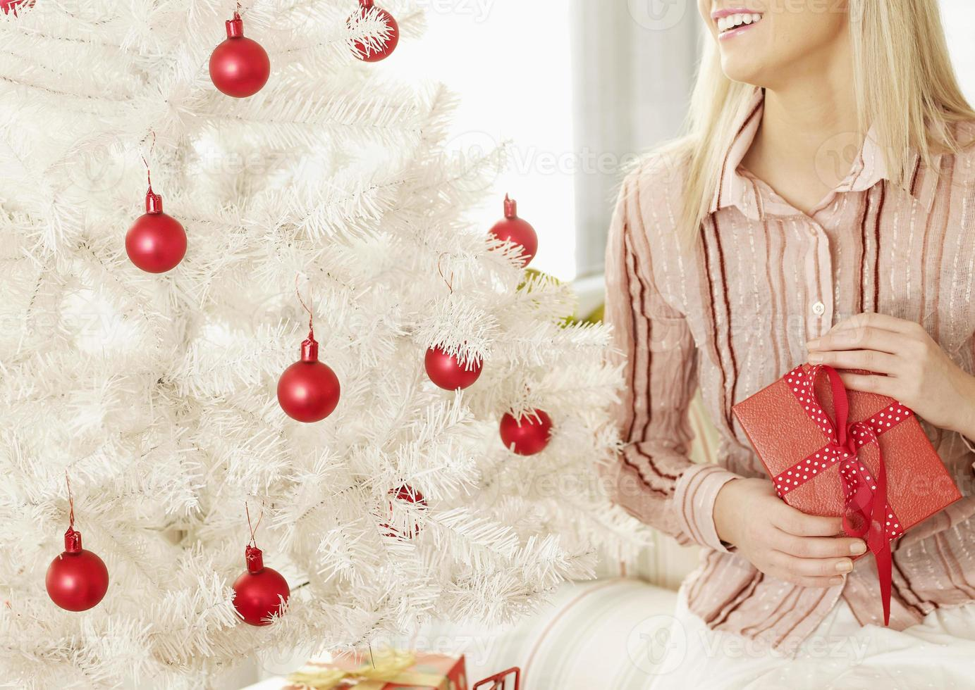 Close-Up of Woman with Christmas Present photo