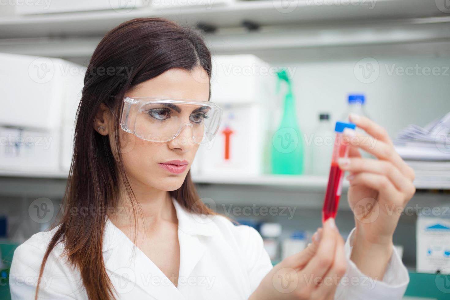 Scientist examining a test-tube photo