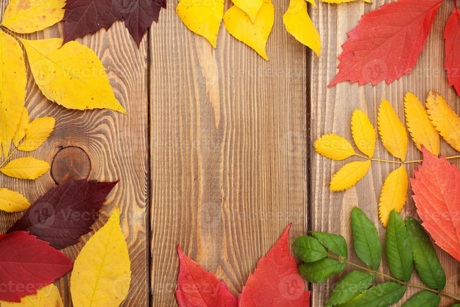 Autumn leaves over wood background with copy space photo