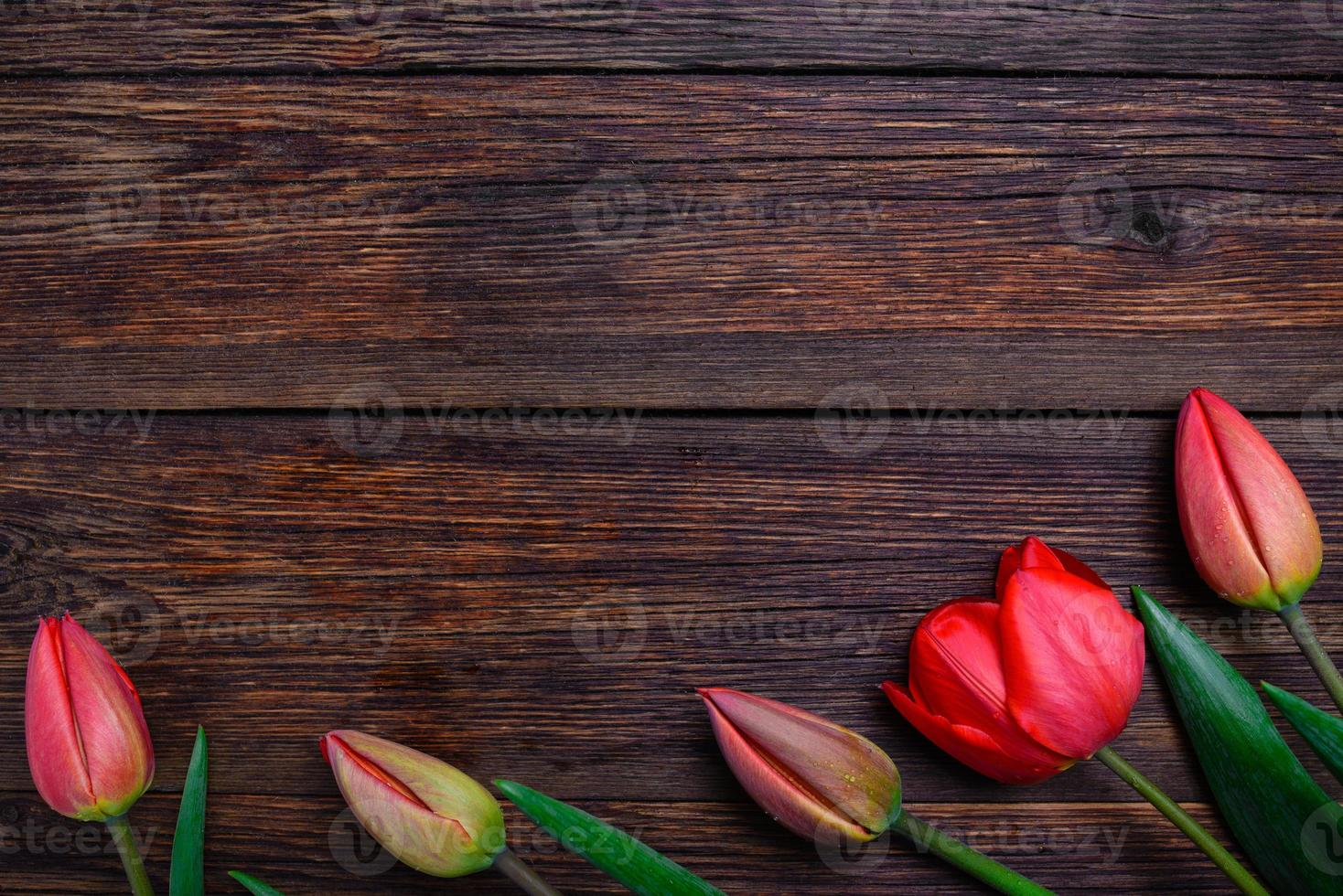 tulips spring flowers on wooden background. Top view, copy space. photo