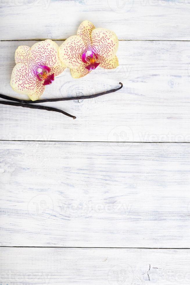 Flores de orquídeas con vainas de vainilla sobre fondo de madera. copia espacio foto