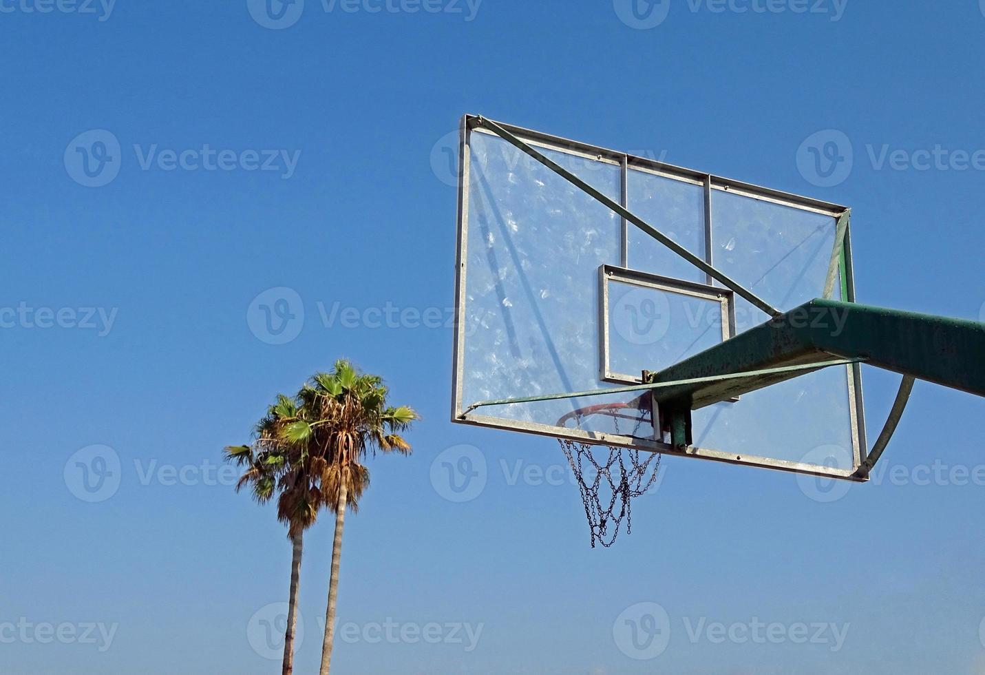 baloncesto y palmeras foto