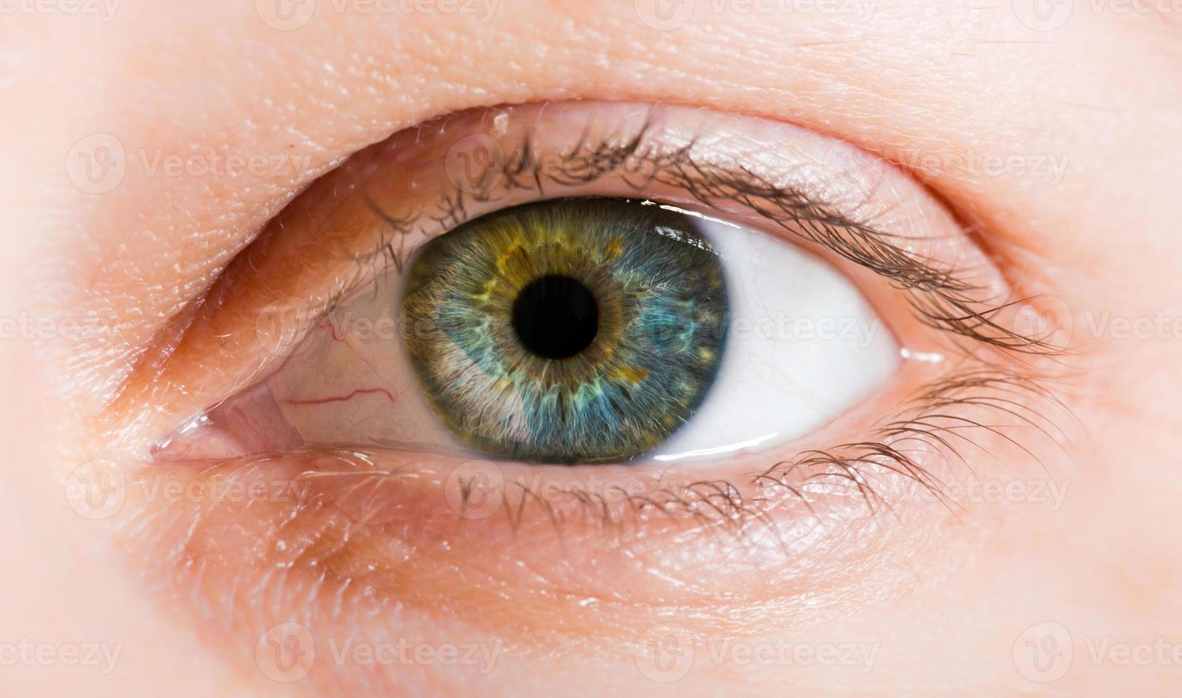 Macro image of human eye photo