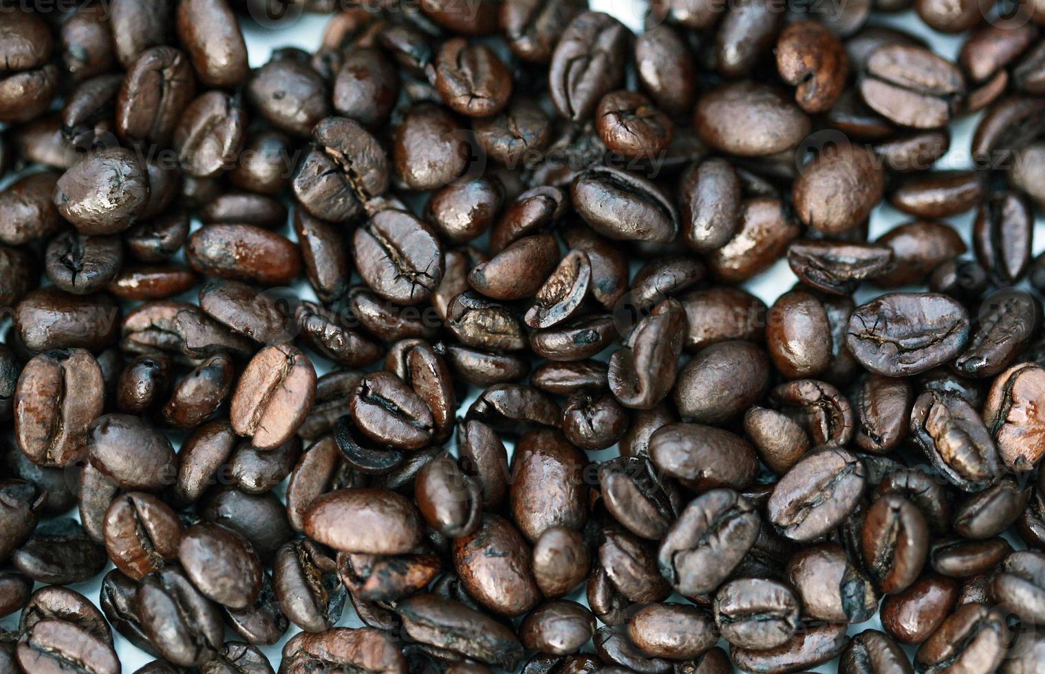 granos de café de cerca foto