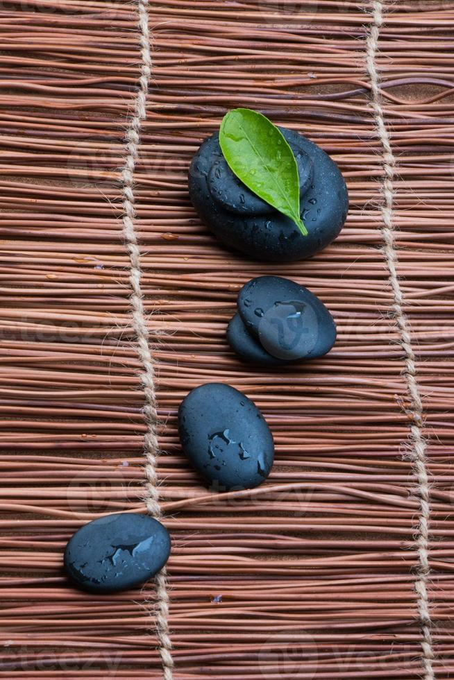 pebbles and green leaf photo