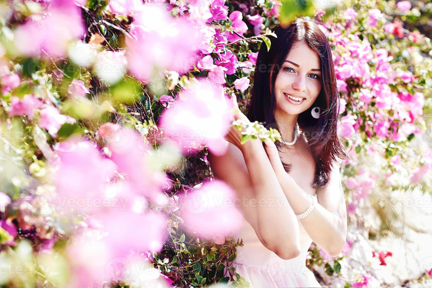 pink flowers photo