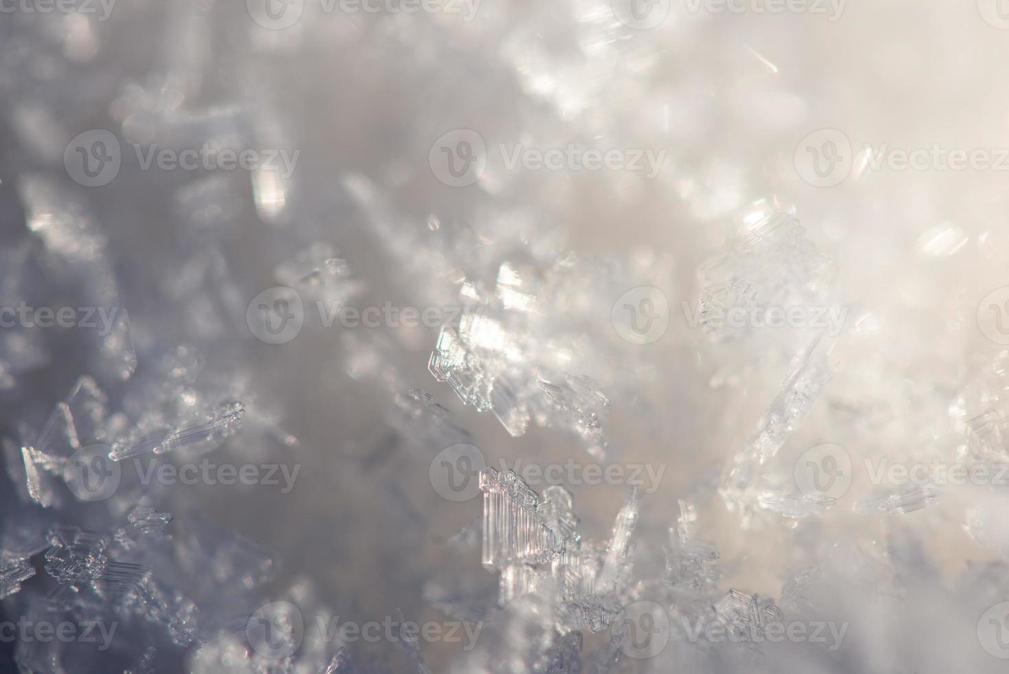 close-up frozen snowflakes photo
