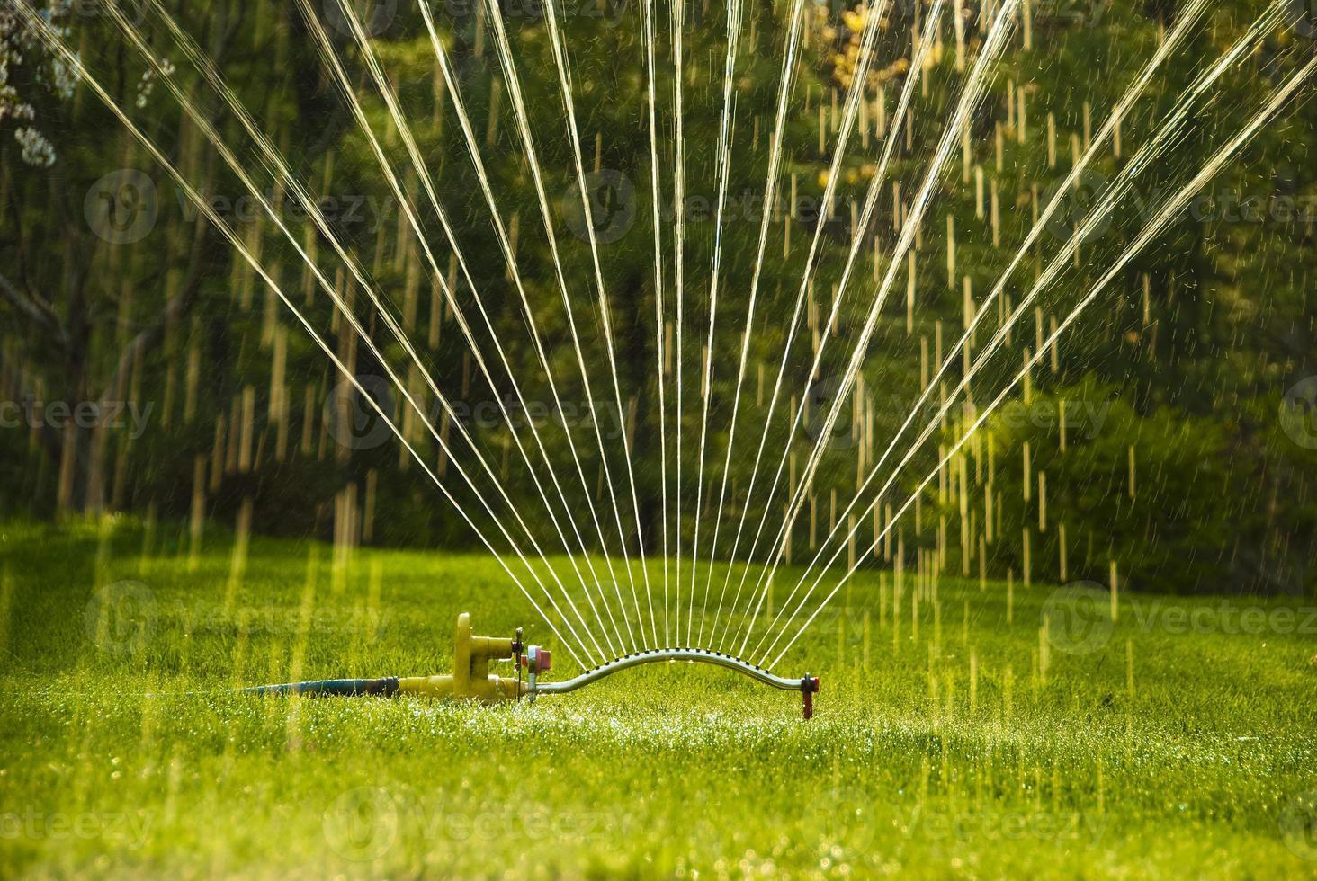 Close up of sprinkler photo