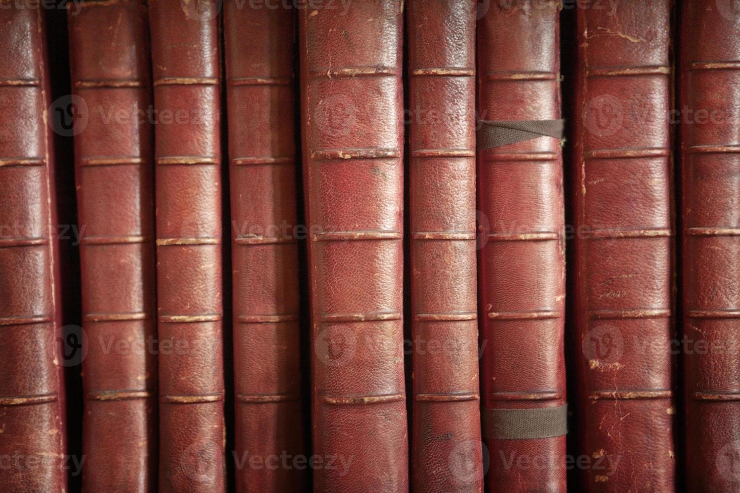 many books photo