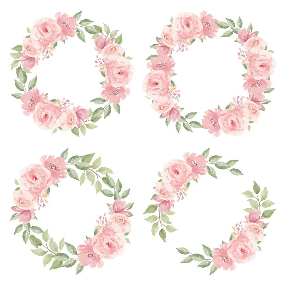 collezione ghirlanda di fiori rosa rosa dell'acquerello vettore
