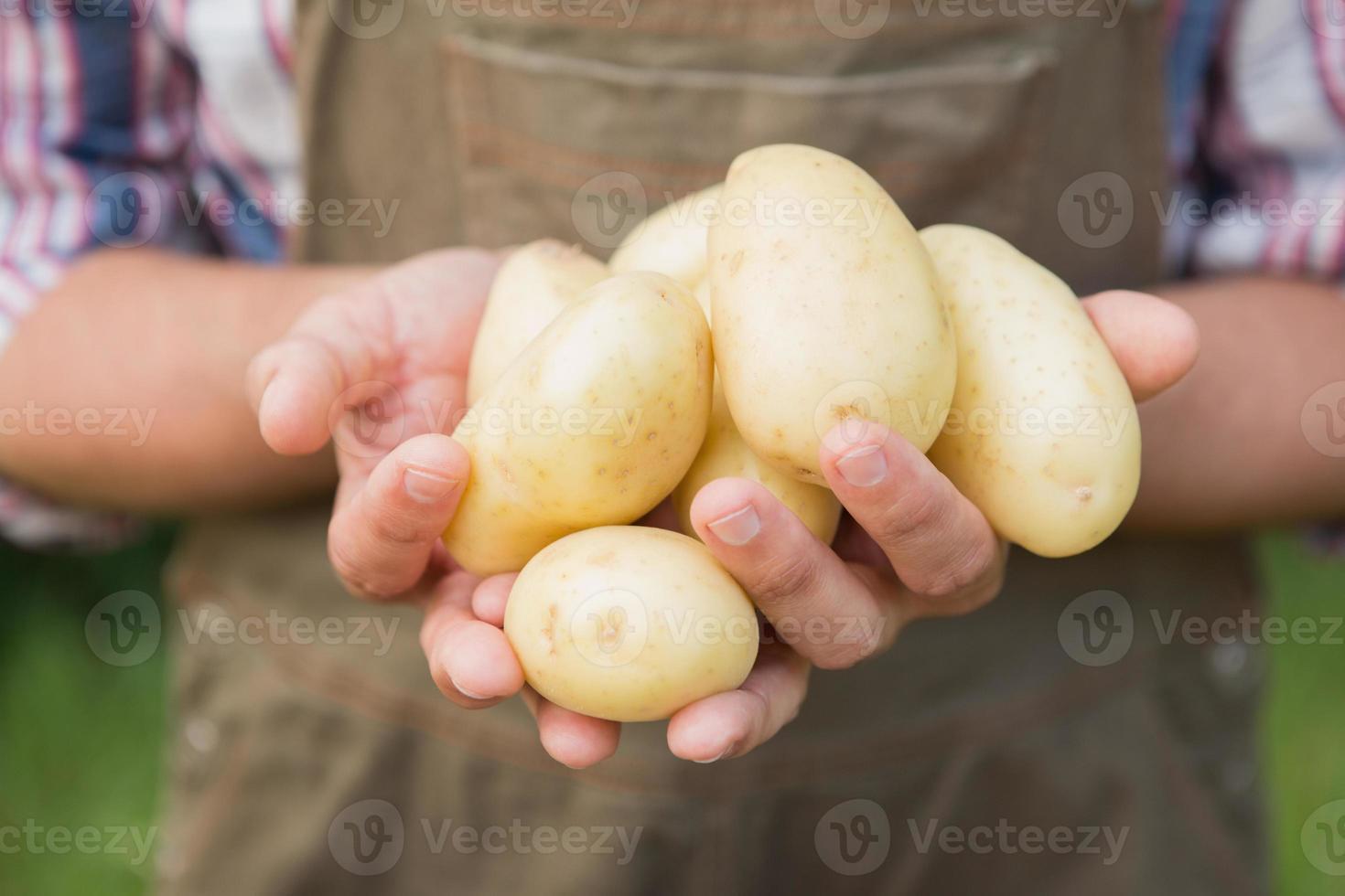 agricultor vendiendo verduras orgánicas en el mercado foto