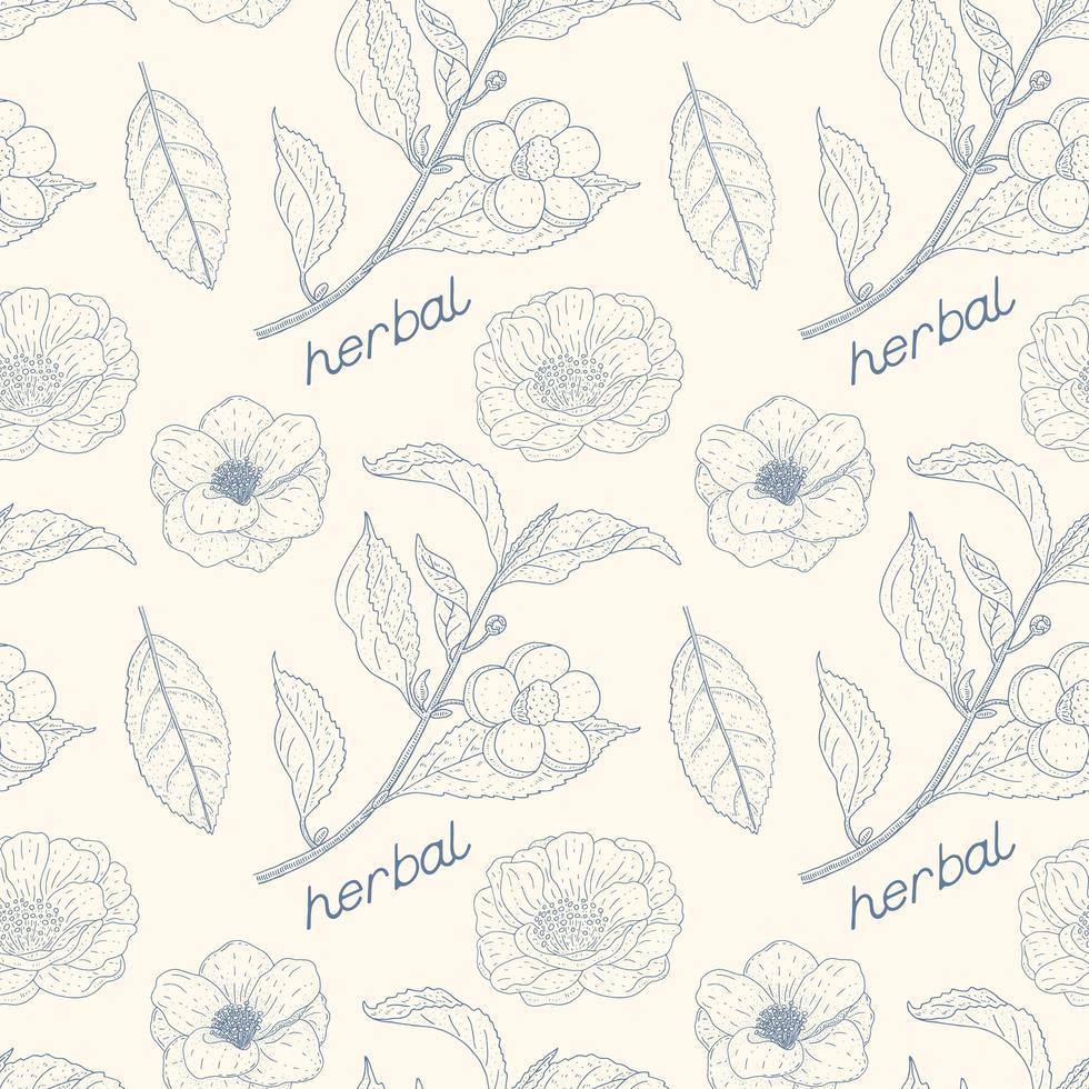 camellia sinensis vintage padrão sem emenda vetor