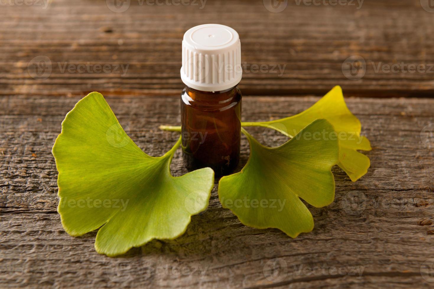 hojas de gonkgo y extracto foto