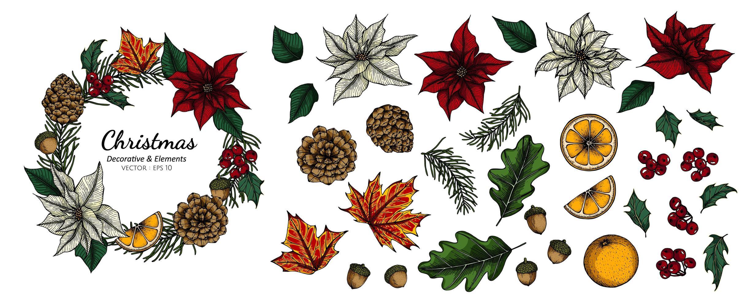 conjunto de decoración flores y hojas de navidad vector