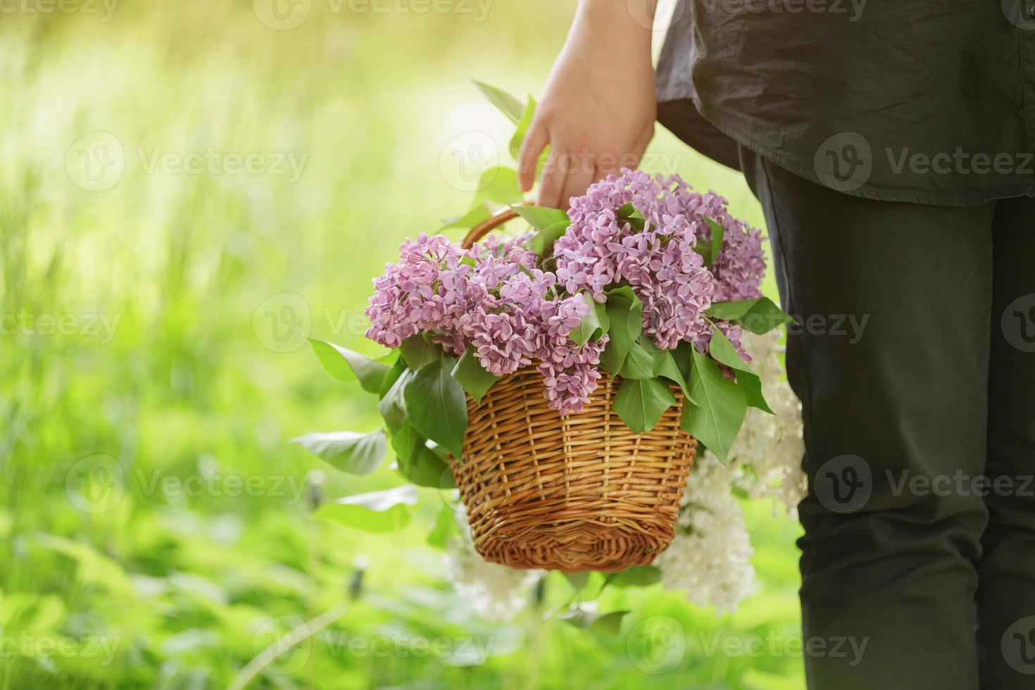 Niña adolescente sostenga la canasta llena de flores lilas foto