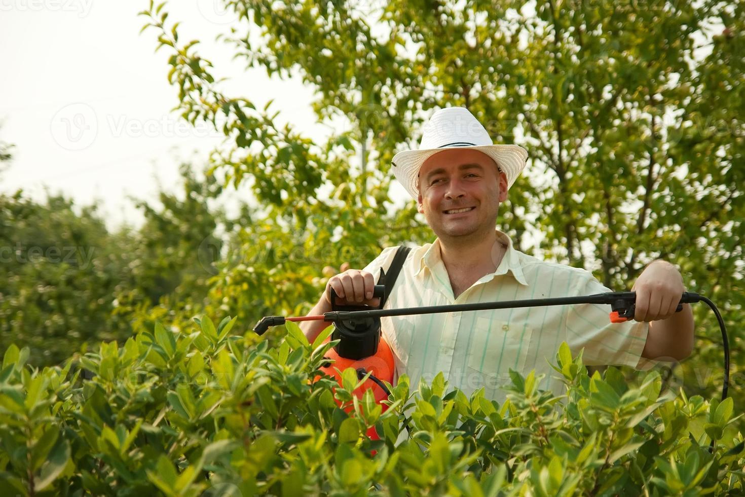 ramas de los árboles de pulverización masculina foto