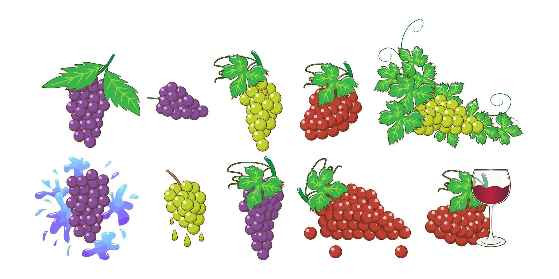 conjunto de cacho de uva vetor