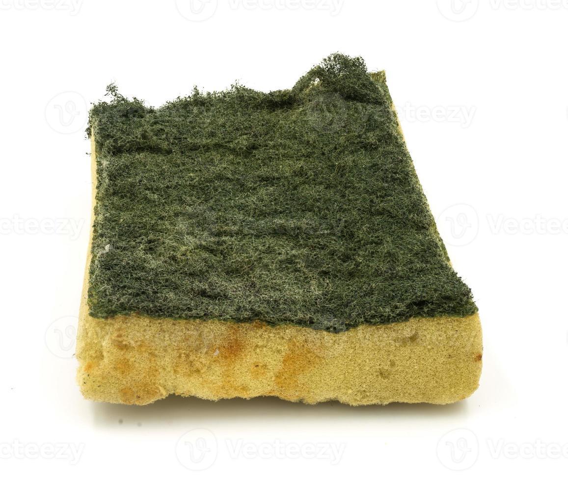 Old kitchen sponge on white background. photo