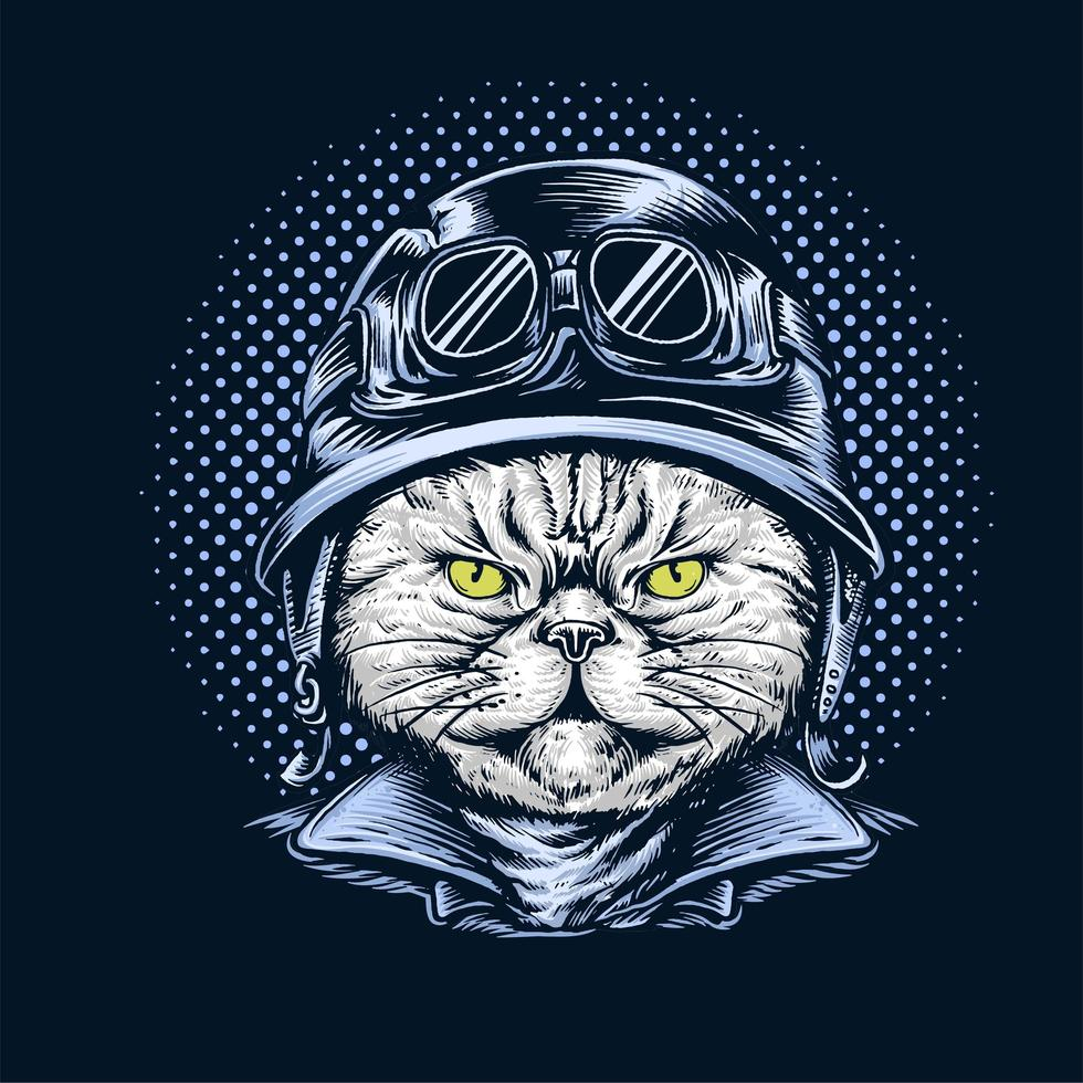 Cat Wearing Motorcycle Helmet vector