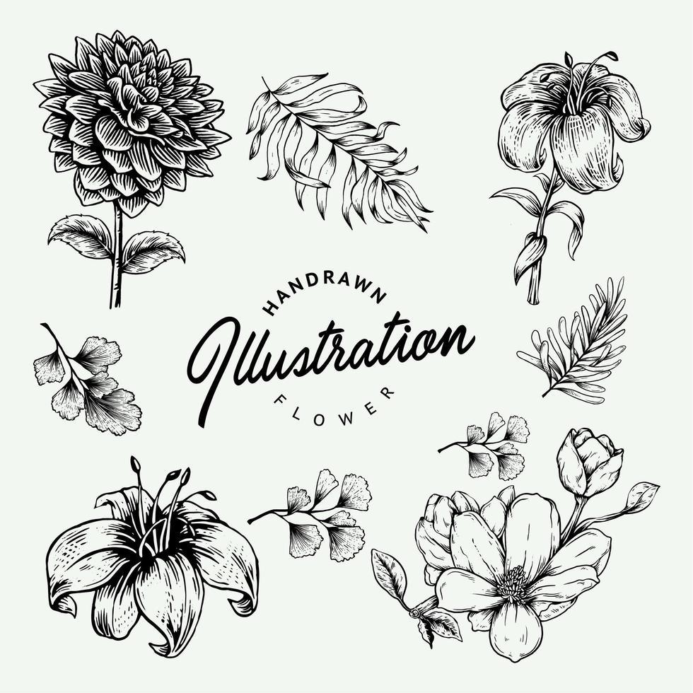 conjunto de flores de mão desenhada vetor