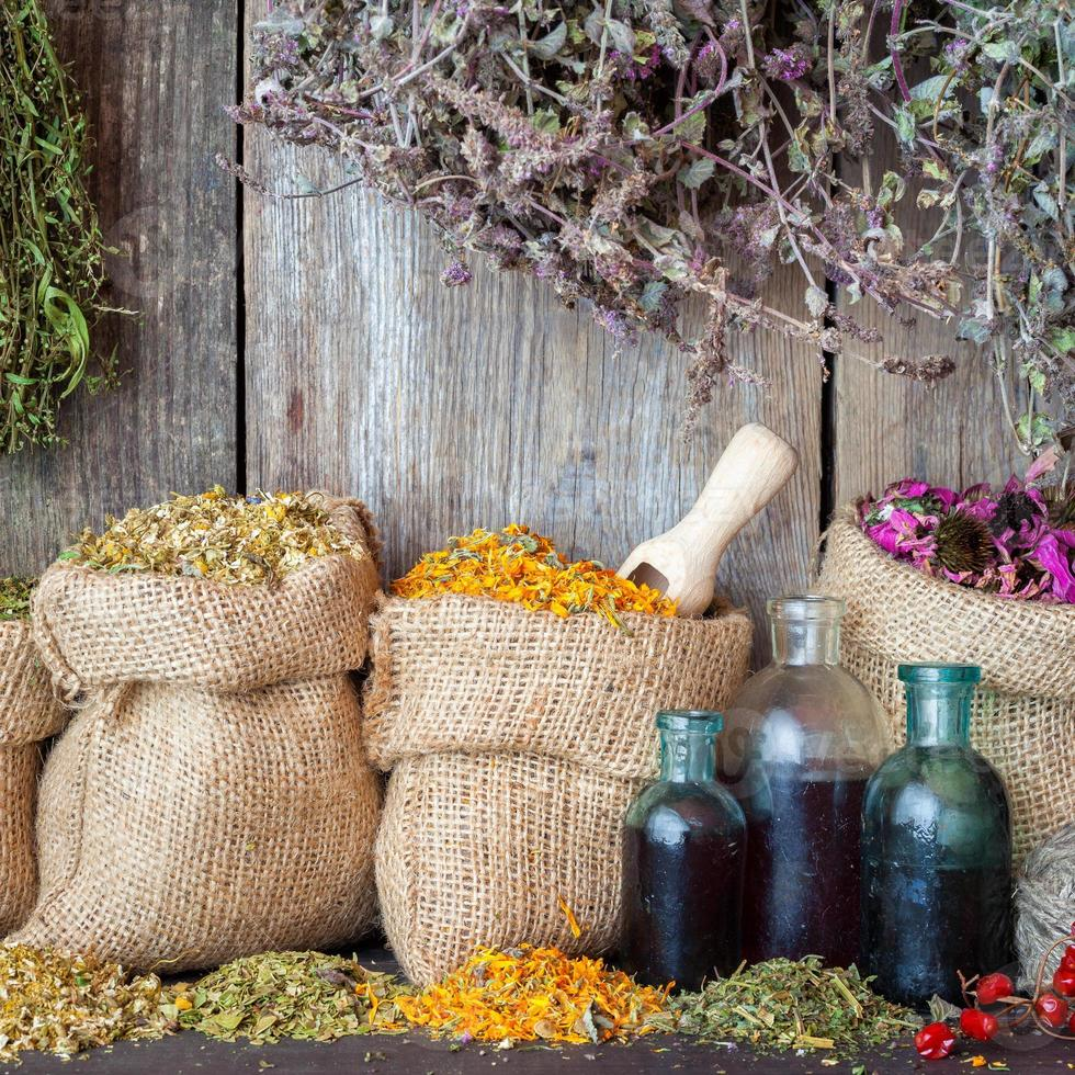 Healing herbs in hessian bags and bottles of essential oil photo