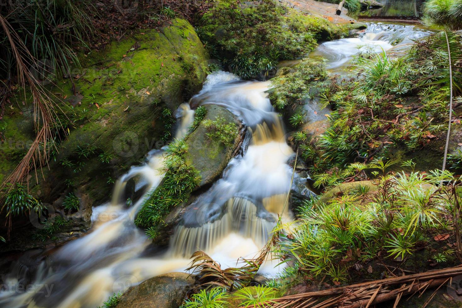 Small waterfall in jungle photo