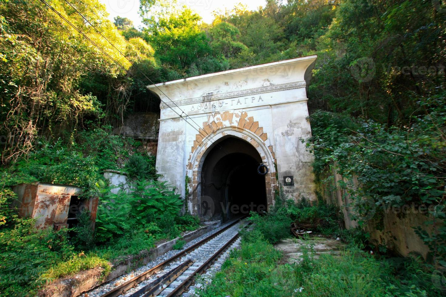 The portal in railway tunnel in the jungle photo