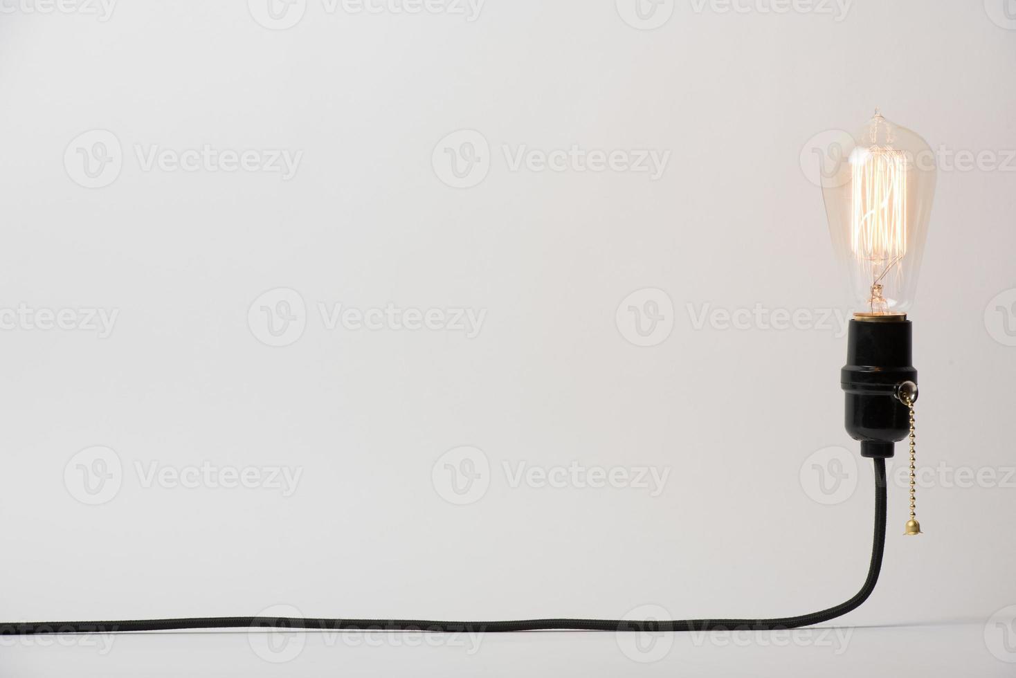 Light Bulb Suspended photo