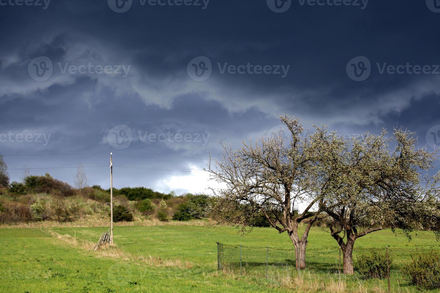 cuando viene la tormenta foto