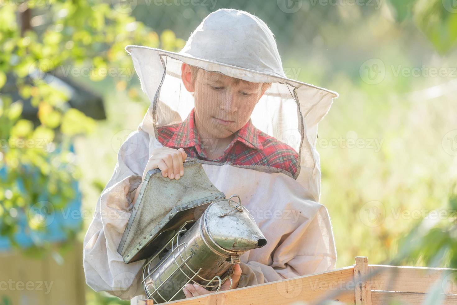 Teenage beekeeper inspecting commercial bee yard photo