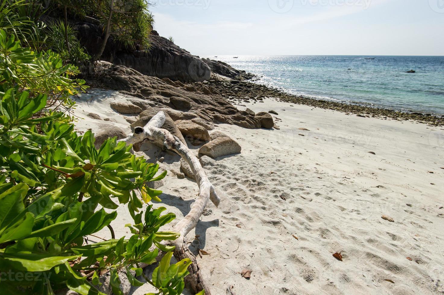 mar y la selva en el parque marino nacional tarutao foto