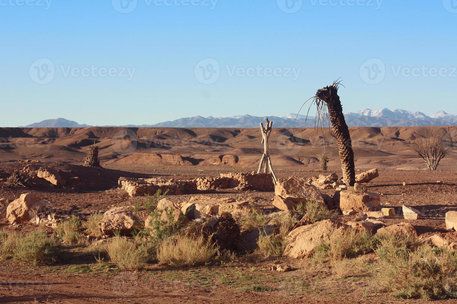 Desert Well photo