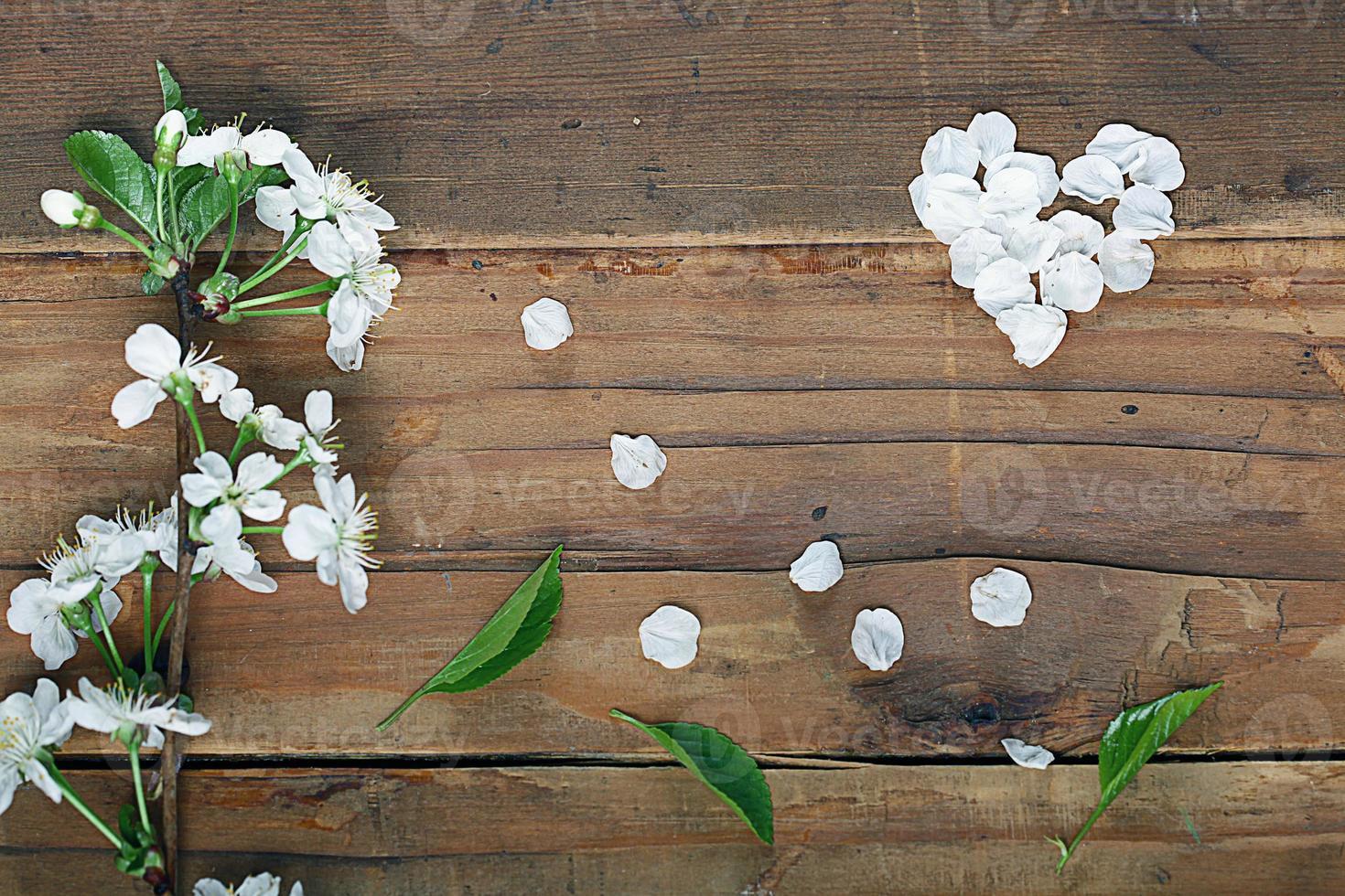 flores de cerezo y ramitas sobre un fondo de madera foto