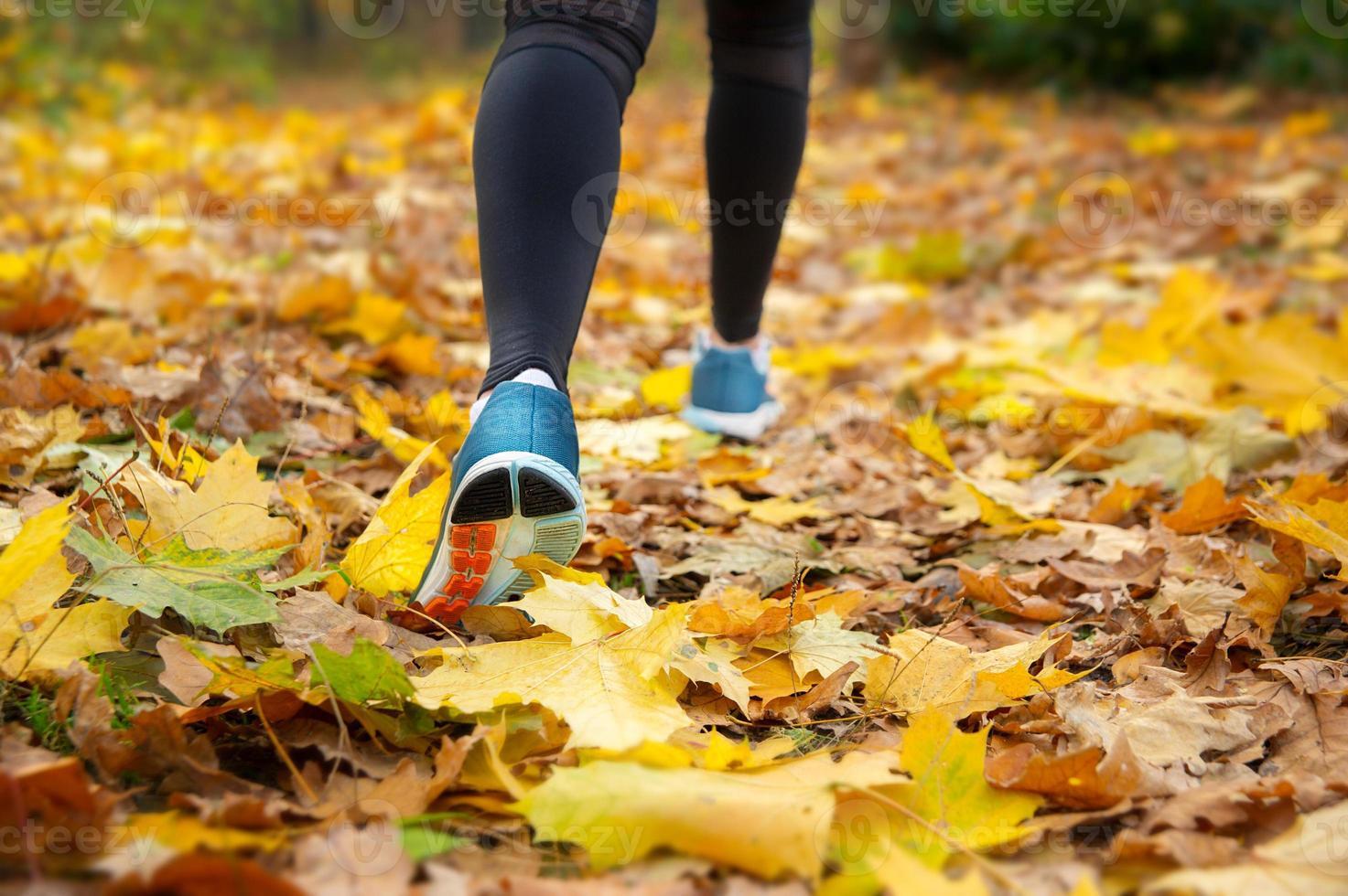 correr en el bosque de la mañana de otoño foto